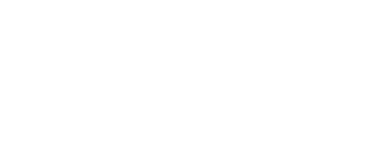 The Diversity Group